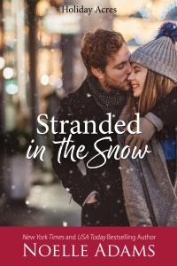 Stranded in the Snow2