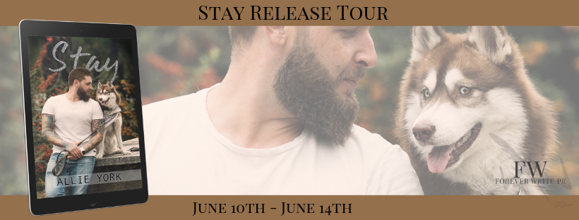 Stay Tour Banner