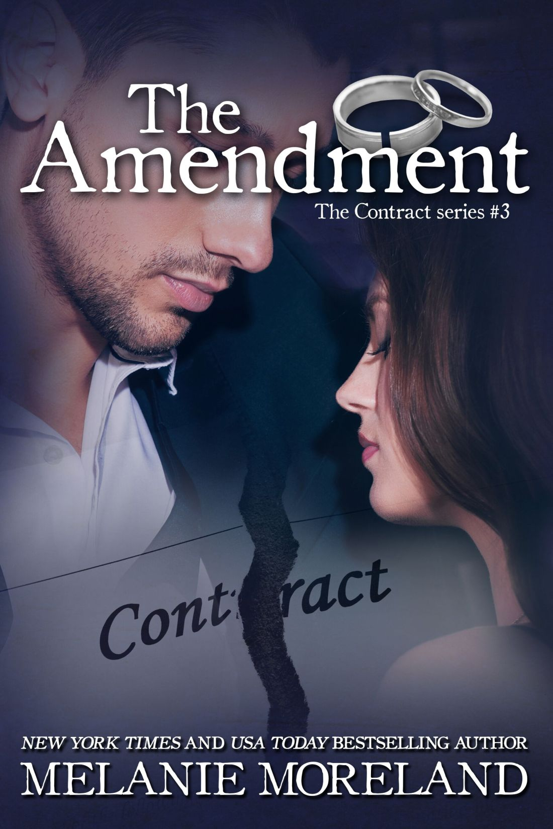 The Amendment Cover (002)